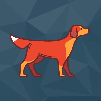 Aulao Pratico Inbound - Modulo Cachorro